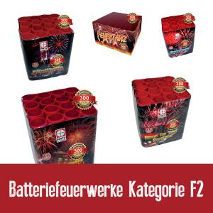Batteriefeuerwerke Kategorie F2