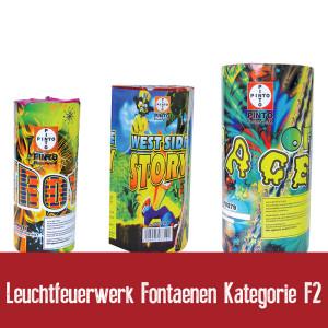 Leuchtfeuerwerk Fontaenen Kategorie F2